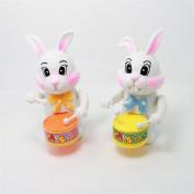 WuliRose 2 Pcs Wind Up Rabbit Drum Toys Plastic Animal Clockwork Spring Toy Educational Developmental Musical Toy for Baby Kids, Random Colours