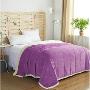 Coral fleece Solid Polyester/Cotton Blend Blankets , purple