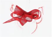 Bernadine Sinamay & Feather Slide Fascinator, from Elegance Boardmans