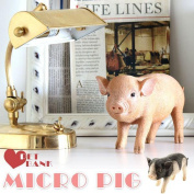 The model coin bank animal present gift present interior miscellaneous goods animal coin bank PET BANK MICRO PIG pink / spot that hits the display art object ornament that the money box money box coin of the money box pig interesting real animal