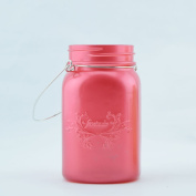 Fantado Wide Mouth Frosted Fuchsia / Hot Pink Mason Jar w/ Handle, 950ml by PaperLanternStore