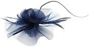 Lukis Women Mesh Hair Clip Fancy Dress Party Head Pin Rose Bridal Fascinator Brooch