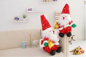 EOYHDSIA Cartoon Christmas Santa Claus Dolls Christmas Gifts