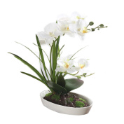 HimanJie Artificial Silk Flowers Phalaenopsis Bonsai Simulation Potted Flowers