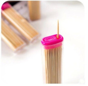 Portable refined fine toothpick boxes,4 / group