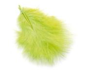 Apple Green Feathers x 40 - True Love