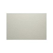 Bockingford 140NT 80cm x 60cm 300 gsm Watercolour Paper Sheet