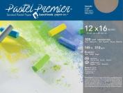 Pastel Premier Paper Med-Fine 12X16 6 Sht/Pk