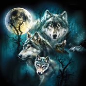 Full Area DIY Cute Wolf 5D Crystal Painting Cross Stitch Diamond Drawing Home Decor Size:40X40cm