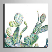 XIMUSAN Frameless painting,Stretched Canvas Art Different Forms of Cactus Decoration Painting , 60*60*1
