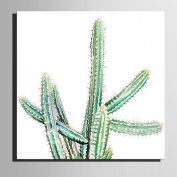 XIMUSAN Frameless painting,Stretched Canvas Art Different Forms of Cactus Decoration Painting , 40*40*1