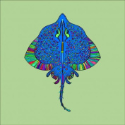 Stingray Colouring Stretched, 90 x 90 cm