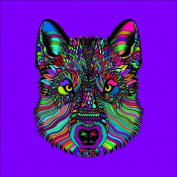 Wolf 2 Colouring Stretched, 60 x 60 cm