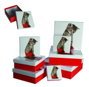 Ladies Lady Women Woman Her - Top Selling Cute Kitten & Ball Of Wool Gift Storage Box Set - Wrapping Solutions - Perfect for Secret Santa Stocking Fillers Xmas Christmas Birthday Valentines Anniversary Gift Present Idea - One Supplied