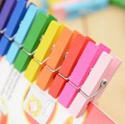 Liroyal 3.5cm coloured wooden clip 100pcs