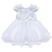 CHICTRY Infant Baby Girls' 3D Rose Flowers Princess Birthday Party Baptism Gown Tutu Dress