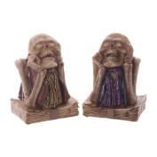 Book Keeper Gruesome Skull and Torso Money Box