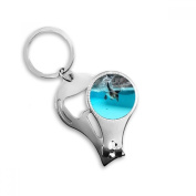 Ocean Antarctic Penguin Science Nature Picture Metal Key Chain Ring Multi-function Nail Clippers Bottle Opener Car Keychain Best Charm Gift