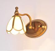 HOHE SHOP/ American Continental LED bathroom mirror bathroom cabinet mirror lights hood headlight (energy efficiency rating