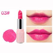 Lipstick,Wanshop® Sexy Long Lasting Waterproof Beauty Waterproof Long Lasting Lip Pencil Matte Lipstick Lip Gloss Makeup Tool