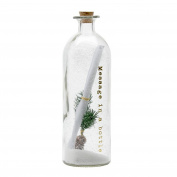 Heaven Sends Message in a Festive Glass Bottle (9x27.5cm)