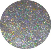 Holographic SILVER Glitter 10g Bag for FESTIVALS, NAIL ART, COSMETIC, CRAFT, FLORIST, WINE GLASS GLITTER
