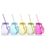 Glass Jar With Lid & Straw 5 Assorted One Supplied
