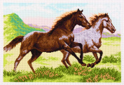 Duftin PA 4629.6loping Horses Printed Cotton Embroidery with Aida Canvas Multi-Coloured 37 x 49 x 0.1 cm
