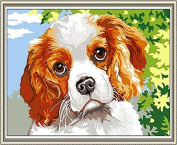 GMMH Diamond Picture 14 x 18 Diamond Painting Embroidery Painting Handmade Craft Mosaic Stones Dog