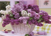 GMMH Diamond Painting Set Picture 30 x 40 Painting Embroidery Handmade Craft Mosaic Flower Basket Lavender
