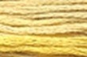 Summer Meadow - Sampler Thread