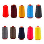 Labellevie 10 Spools Polyester Sewing Thread Mixed colour 3000 Yards