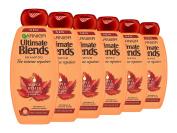 Garnier Ultimate Blends Maple and Castor Oil Shampoo, 360 ml, Pack of 6