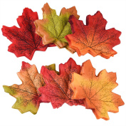 Zealor 300 Artificial Fall Maple Leaves Autumn, 6 Assorted Colours for Weddings Party Fall Decor