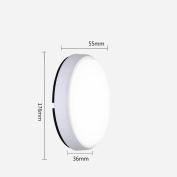 Daeou Waterproof wall lamp, ceiling lamp, aisle balcony outdoor lamp, lawn garden wall lamp Shade material:Acrylic size:17.6x5.5x3.6cm