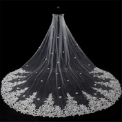 Wedding Veil 3m European-Style Paper-Cut Lace Three-Dimensional Flowers Long Section Of The Big Tail Yarn Shoulder Yarn
