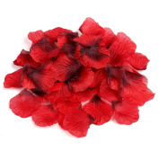 Naler 2000pcs Red Artificial Silk Rose Petals for Christmas, Wedding Flowers, Confetti, Table Scatter