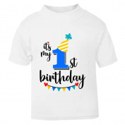 It's My 1st First Birthday T-Shirt Childrens Kids T Shirt Boys Age Size Cake Smash