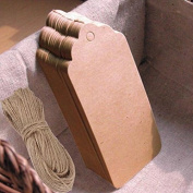 100 PCS Kraft Paper Gift Tags Wedding Scallop Label Blank Luggage Tags+Strings