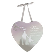 Widdop Bingham Mothers Day Nan Reflection Of The Heart Mirror Plaque (One Size)