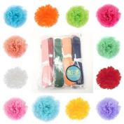 BFlowerYan 1Dozen Assorted Colour 15cm(6 inch) Flower Balls Tissue Paper Pom Poms Party Wedding Decorations