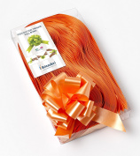 CONF. 50 Bows Rapid Ribbons – Orange – 31 mm – Decorations Events Graduation