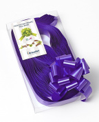 CONF. 50 Bows Rapid Ribbons – Purple – 31 mm – Rosette Events Decorations