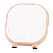 Creative LED Makeup Mirror Bluetooth Audio Touch USB TF Card Multi-Function Mirror , pink