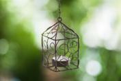 Rustic Dark Wire Birdcage Tea Light Holder Votive Holder for Samplers or Tea Lights Vintage Decorative Cute Candle Holder for Tables by City to Cottage