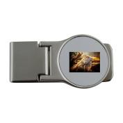 Metal money clip with Lizard, Close, Nature, Reptile, Animal