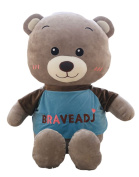 Good Night Stylish Plush Brave Bear Toy Stuffed Hugging Doll, Home Decoration