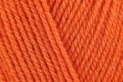 Stylecraft Special DK Yarn 100gms Spice 1711