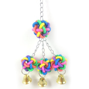 Birds Hanging Toys Colourful Plastic Hand Grabbing Balls With Bells for Climbing Biting Chewing