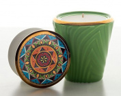 Max Benjamin Voyage Africa Collection Scented Candle 200 g Limited Edition MAASAI MARA -VERDE